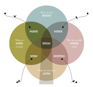 Workshopreeks: Ontdek jouw ikigai én breng die tot leven